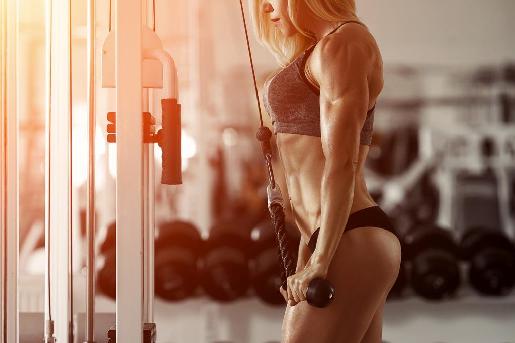 Schnell abnehmen und Muskelaufbau